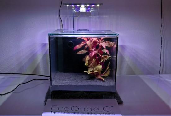 EcoQube C